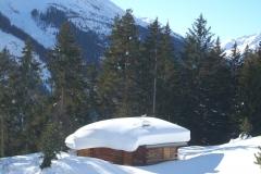 2015-01-12-winterwanderung-almfrieden13