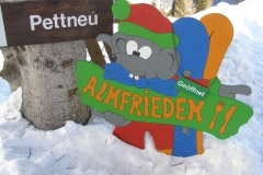 2015-01-12-winterwanderung-almfrieden45